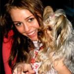 Lanier Taps Miley Cyrus — So To Speak