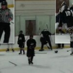 Hockey Player's Mom Explains Why She Stormed Ice During Brawl