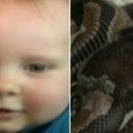Baby Boy Bitten by Python