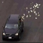Bank Robbers Jettison Handfuls of Money During High Speed Chase
