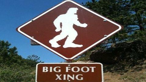 Spike TV to Air Bigfoot Reality Series