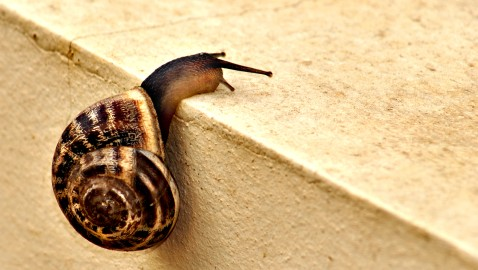 Study Reveals a Slow Start to 2013 for Law Firms