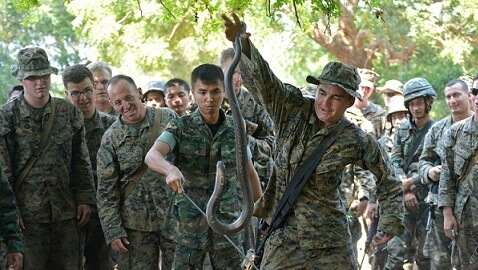 Snake Blood Survival