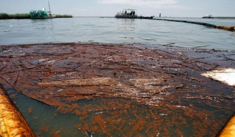 BP Says Businesses Not Harmed by the 2010 Oil Spill Collected Millions