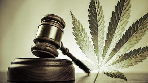 Law schools are beginning to offer marijuana legislation classes.