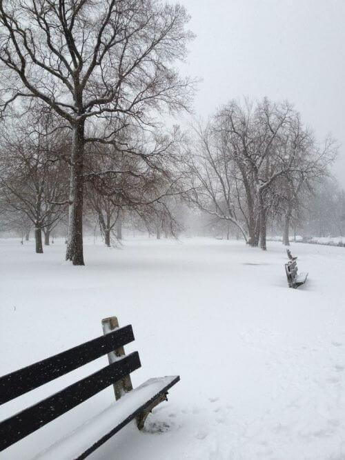 A snowy winter day.