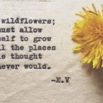 My Favorite Quotes from Pinterest