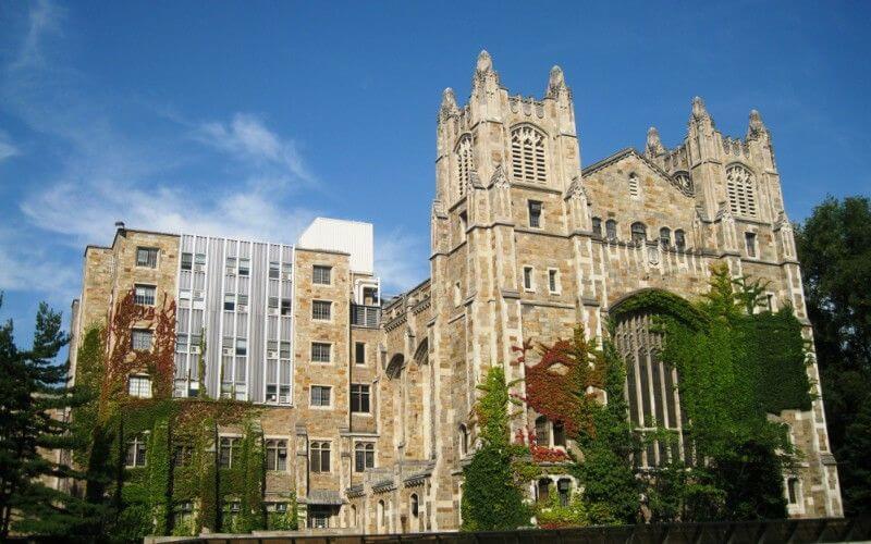 law school enrollment