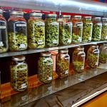 Study Finds Link in Marijuana Shops to Increased Property Crime