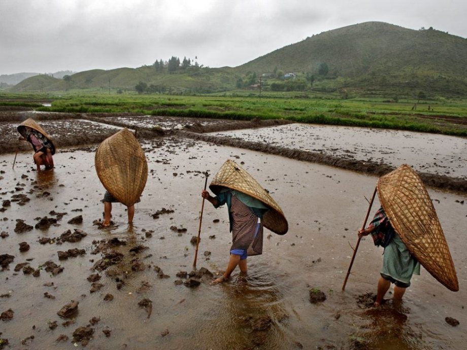 Maysynram, India is the wettest place on Earth.