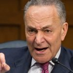 Is Senator Chuck Schumer a Racist?