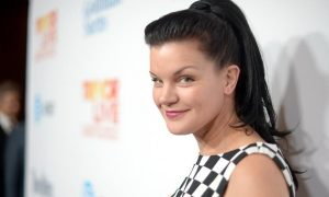 NCIS Star Pauley Perrette Accused of Stalking Ex-Husband